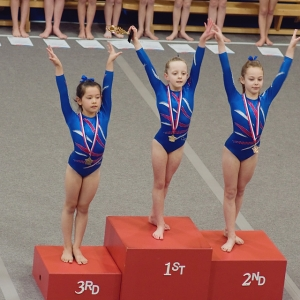 2014 Norfolk County Grade 13 Competition